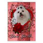 Valentines - Key to My Heart - Maltese Greeting Card