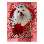 Valentines - Key to My Heart - Maltese Post Card