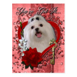 Valentines - Key to My Heart - Maltese Postcard