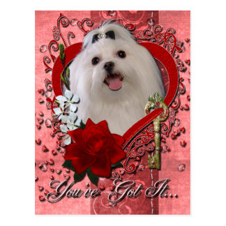 Valentines - Key to My Heart - Maltese Postcard