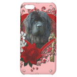 Valentines - Key to My Heart - Newfoundland iPhone 5C Cases