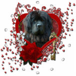 Valentines - Key to My Heart - Newfoundland Photo Sculpture