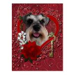 Valentines - Key to My Heart - Schnauzer Postcard