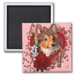 Valentines - Key to My Heart - Sheltie - Cooper 2 Inch Square Magnet