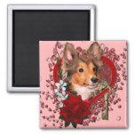 Valentines - Key to My Heart - Sheltie - Cooper Refrigerator Magnets