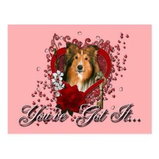 Valentines - Key to My Heart - Sheltie Postcard
