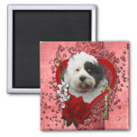 Valentines - Key to My Heart - Tibetan Terrier Refrigerator Magnet