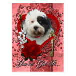 Valentines - Key to My Heart - Tibetan Terrier Postcard