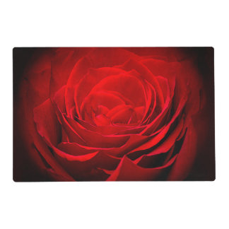 Valentine's Placemat-Stunning Painted Red Rose Placemat