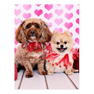 Valentines - Pomeranian Tinkerbell Cockapoo Lacey Postcard