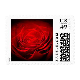 Valentine's Postage Painted Red Rose