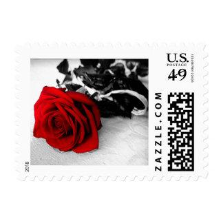 Valentine's Postage - Red Rose / BW