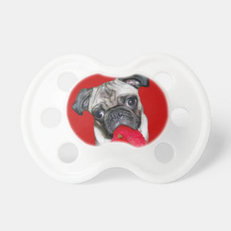 Valentine's pug dog pacifier