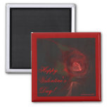 VALENTINE'S ROSE ~ On Black Fridge Magnets