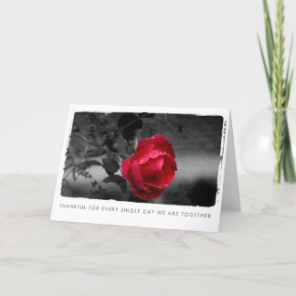 valentines rose photography holiday card