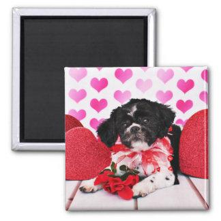 Valentines - Shih Tzu - Sadie Refrigerator Magnets