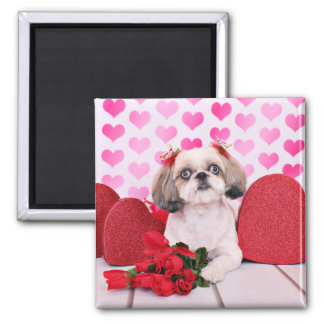 Valentines - Shih Tzu - Sophie Magnet