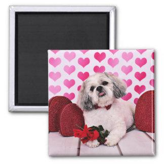 Valentines - Shih Tzu - Teddy Refrigerator Magnets