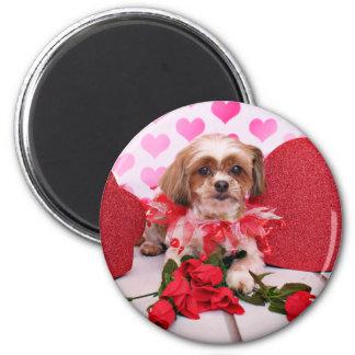 Valentines - Shorkie - Daisy Magnets