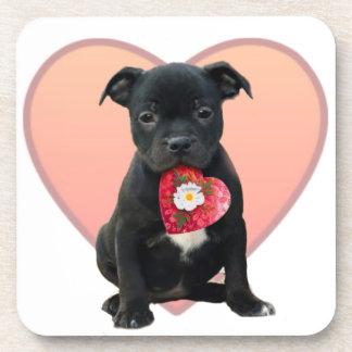 Valentine's Staffordshire bull terrier puppy Beverage Coaster