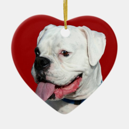 Valentine's White Boxer dog ornament