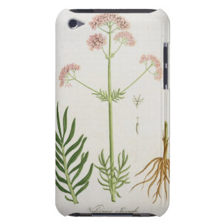 Valerian from 'Phytographie Medicale' by Joseph Ro iPod Touch Cover