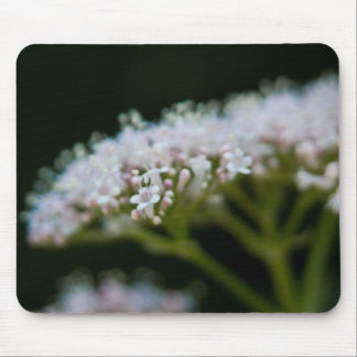 Valerian Mouse Pad