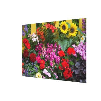 Valla de estacas amarilla con el jardín de flores lienzo envuelto para galerias