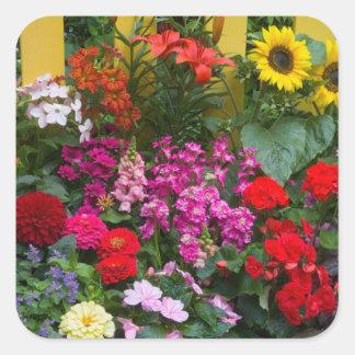 Valla de estacas amarilla con el jardín de flores pegatina cuadrada