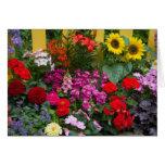Valla de estacas amarilla con el jardín de flores  felicitaciones