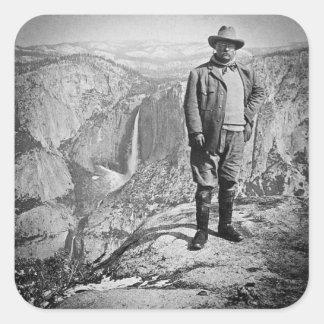 Valle CA de Yosemite del punto del glaciar de Pegatina Cuadrada