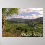 Valle de Hanalei Poster