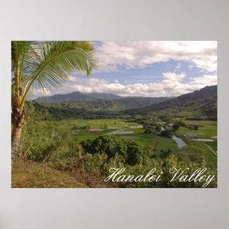 Valle de Hanalei Póster