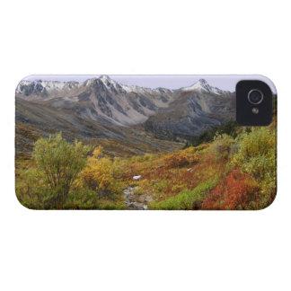 Valle de la caída iPhone 4 Case-Mate cobertura