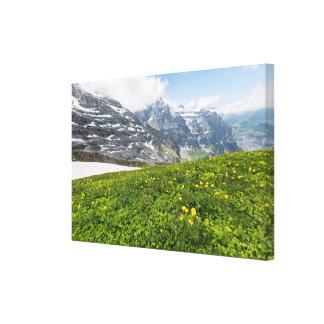 Valle de Lauterbrunnen, Suiza - lona Impresiones En Lona Estiradas
