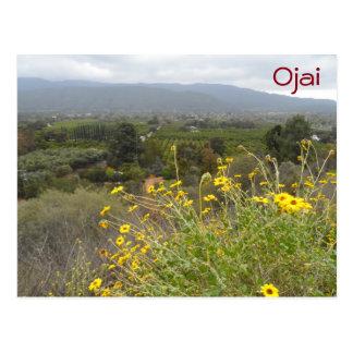 Valle de Ojai, California Tarjetas Postales