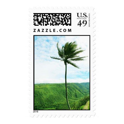 Valle de Pololu, sello de Hawai'i