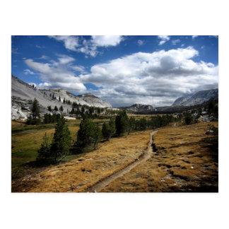 Valle de Vogelsang - Yosemite Tarjetas Postales