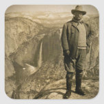 Valle de Yosemite del punto del glaciar de Teddy Calcomanía Cuadrada Personalizada