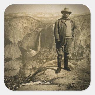 Valle de Yosemite del punto del glaciar de Teddy Pegatina Cuadrada