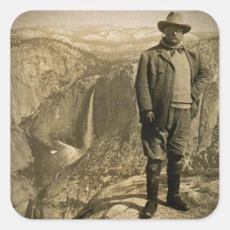 Valle de Yosemite del punto del glaciar de Teddy R Calcomanía Cuadrada Personalizada