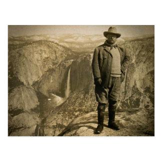 Valle de Yosemite del punto del glaciar de Teddy Tarjetas Postales