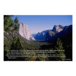 Valle de Yosemite Póster