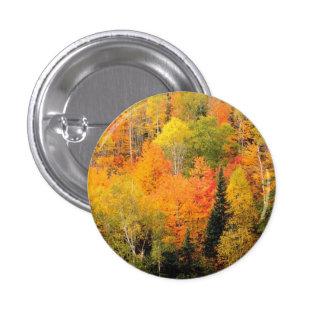 Valle del follaje de otoño pin redondo de 1 pulgada