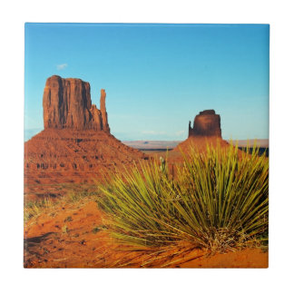 Valle del monumento, Arizona Tejas Ceramicas