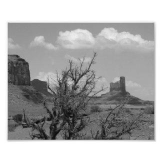 Valle del monumento de B&W en Arizona/Utah 3 Cojinete