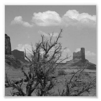 Valle del monumento de B&W en Arizona/Utah 3 Fotografía