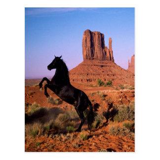 Valle del monumento del caballo salvaje postales