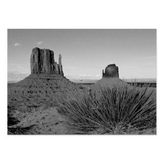 Valle del monumento en Arizona/Utah (blanco y Tarjetas De Visita Grandes