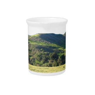 Valle del prado jarra